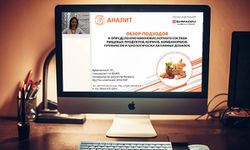 Компания АНАЛИТ теперь проводит вебинары