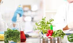 Семинар: «Определение показателей безопасности и пищевой ценности пищевых продуктов на оборудовании SHIMADZU»